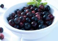 Fructul cu proprietati miraculoase Acai Berry